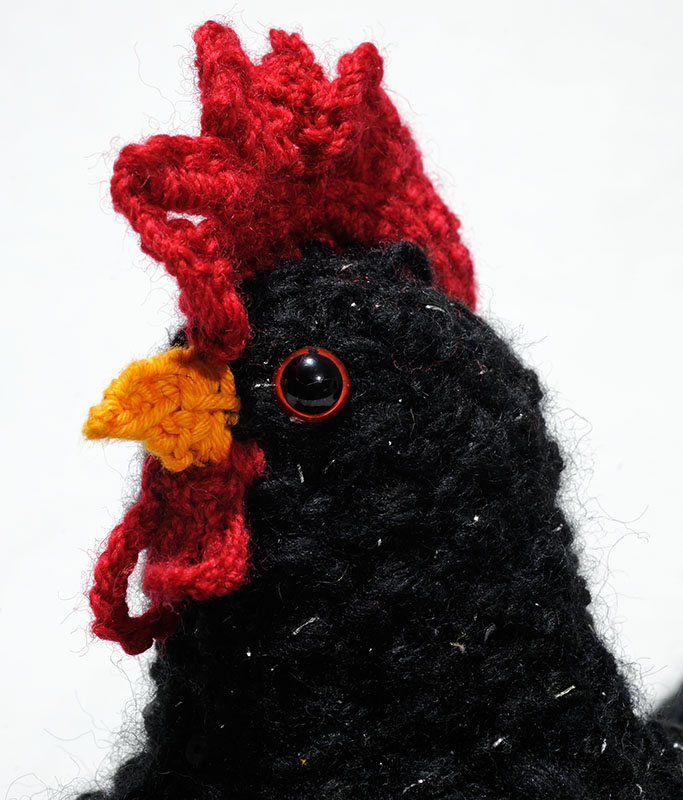 Detail of a chook tea cosy